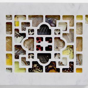 PSICOMANZIA, 2017, marmo e ali di farfalle, cm 17,5x22
